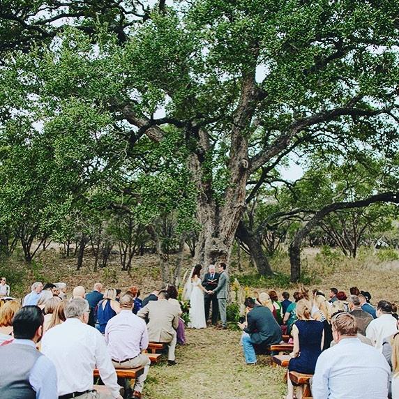 WeddingOakTree